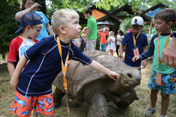 Zoo Knoxville: Wildly Fun Zoo Camp